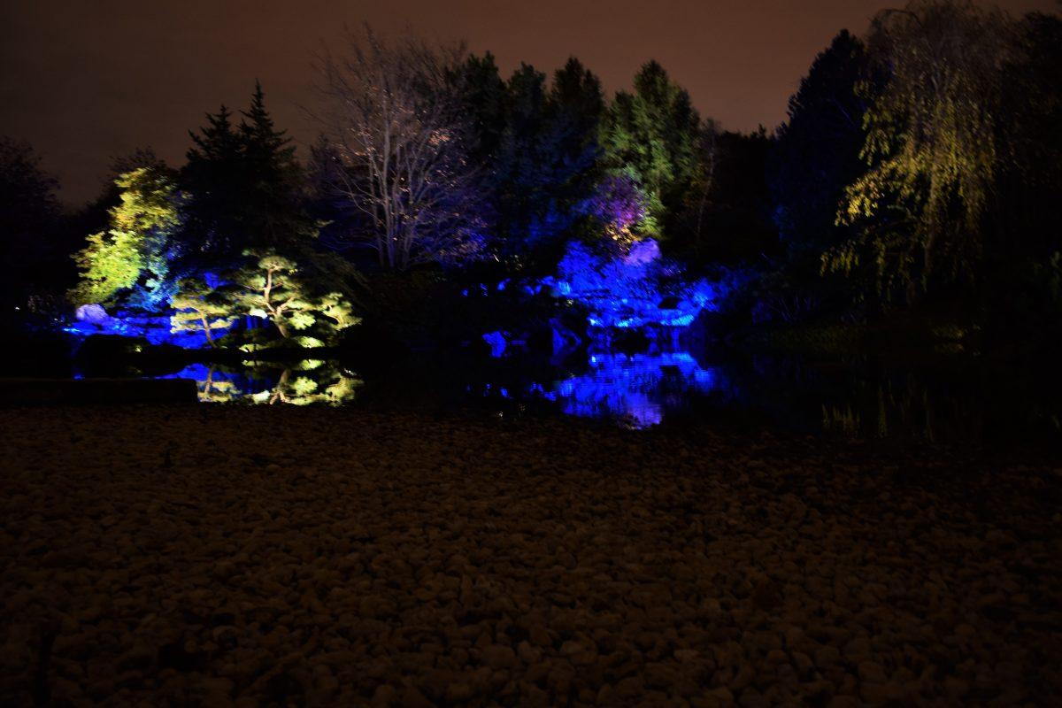 jardinsdelumiere-japon
